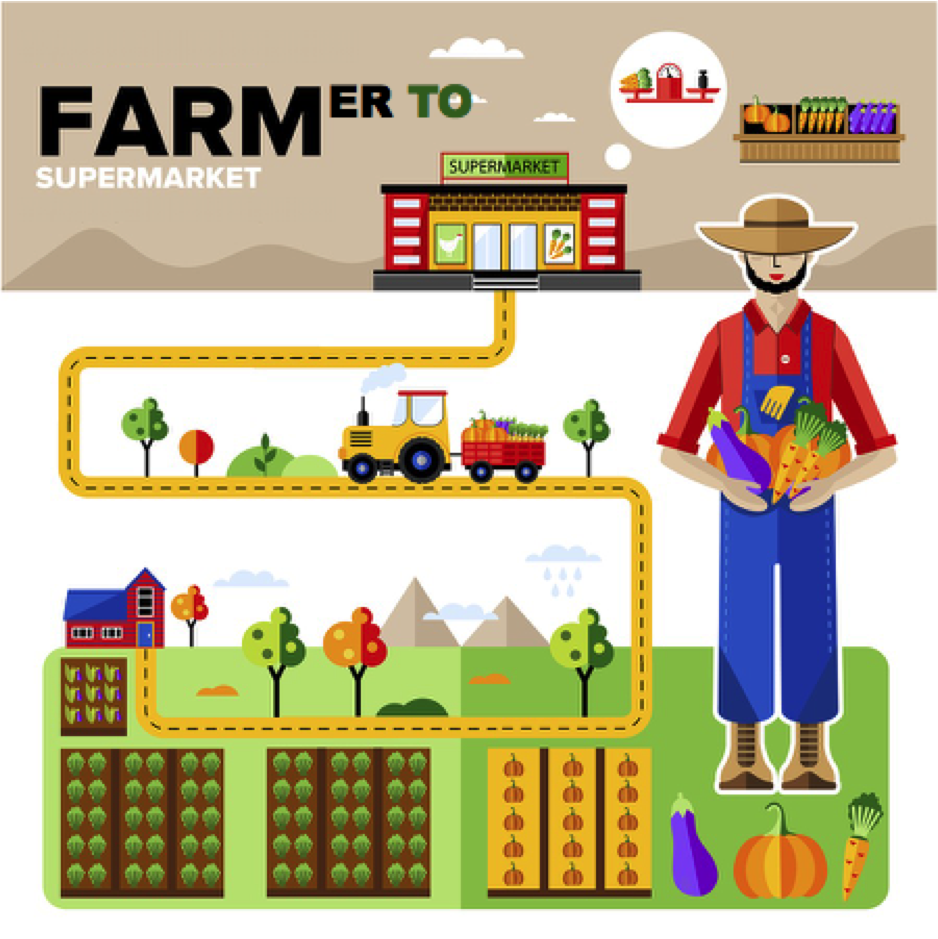 Farmer to Supermarket