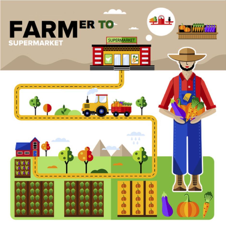 Farmer to Supermarket