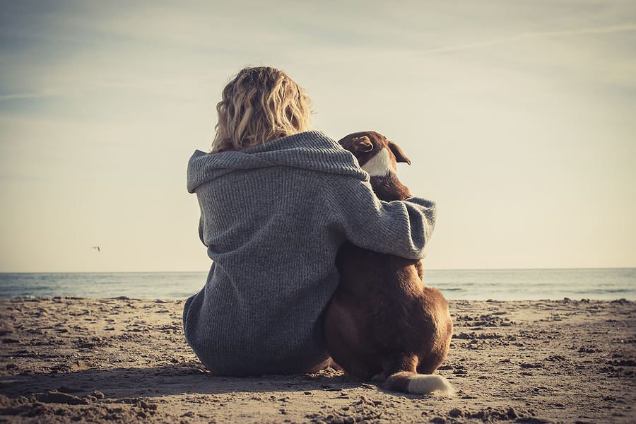 Pet parent bond drives pet food category growth
