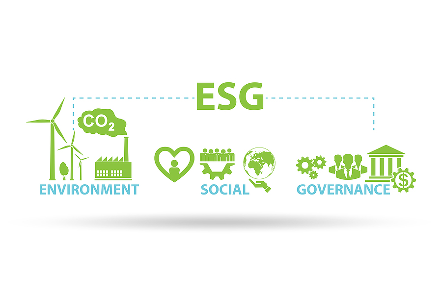 Sustainability drives revenue
