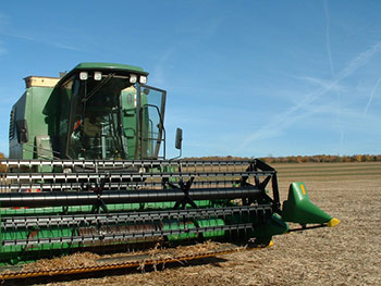farm, field, tree, trees, foliage, equipment, tractor, combine, beans, soy, thrash, thrasher, harvest