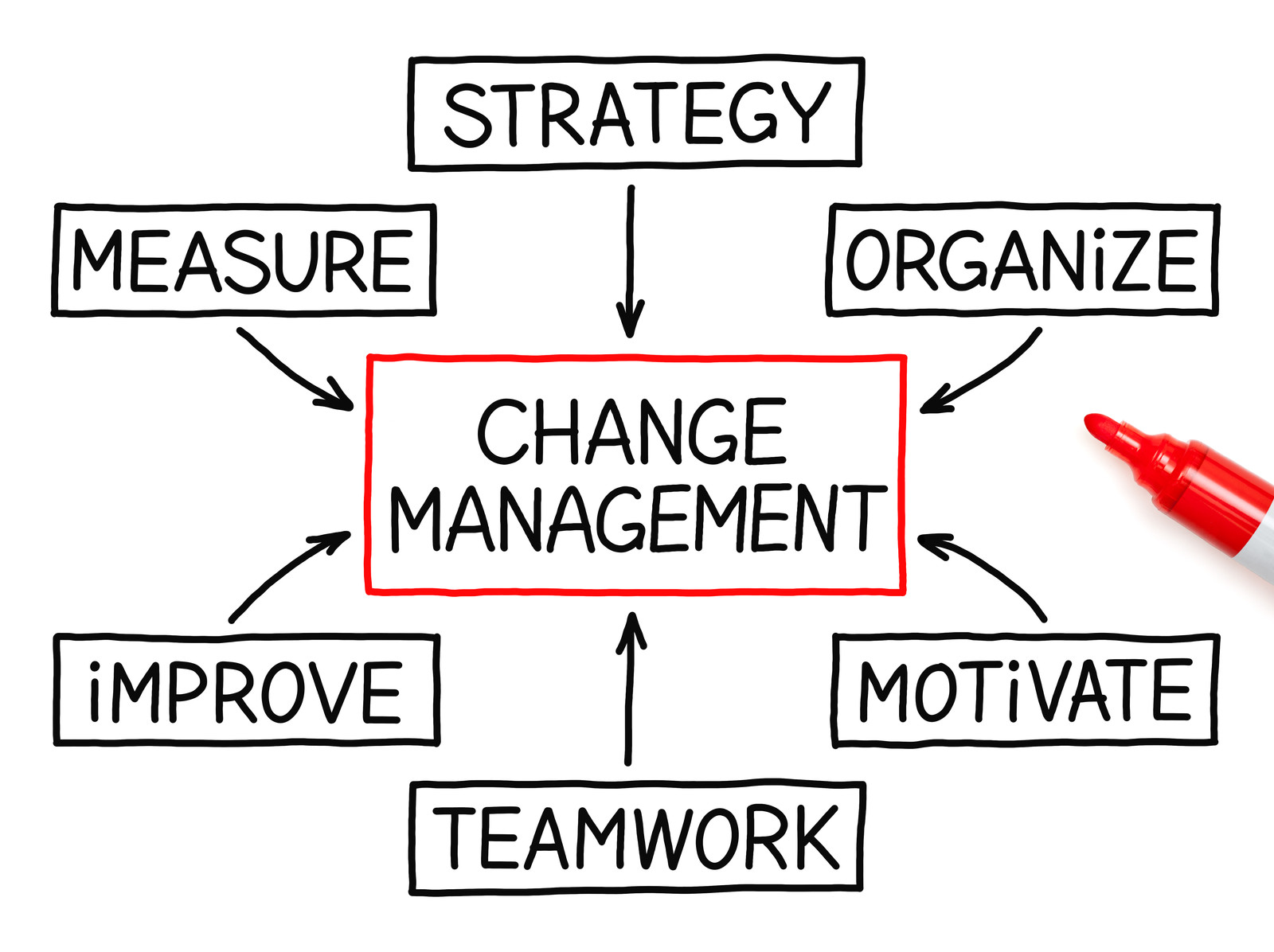 ProVision Coaching Change Management Transition Management Services