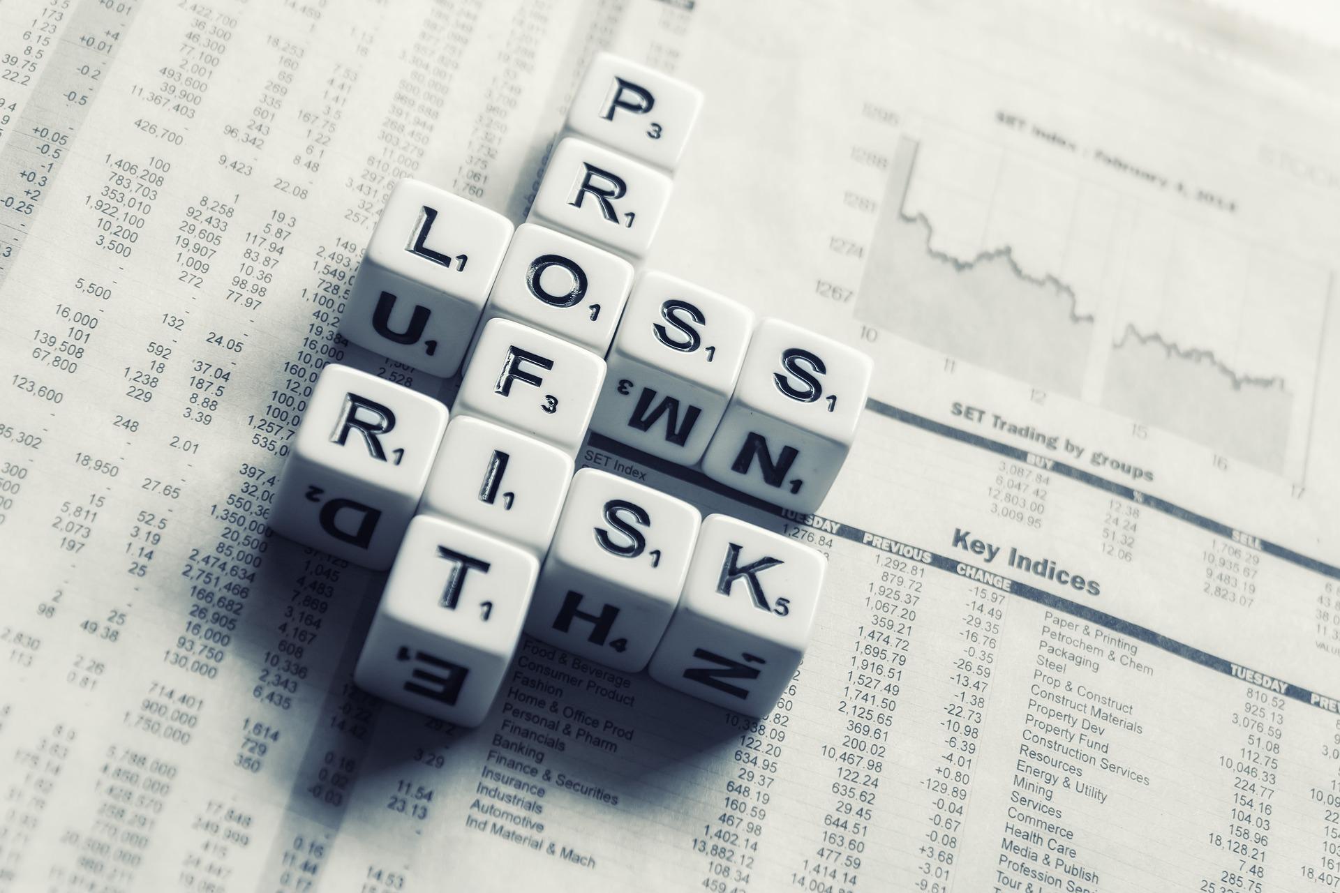 Enterprise Risk Management Services