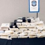 COVID-19 is costing drug cartels millions
