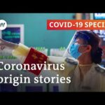 Where did the coronavirus come from?   COVID-19 Special