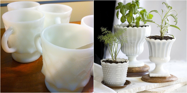 milkglasstrend