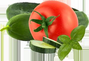 tomato_cucumber_separator_300x206
