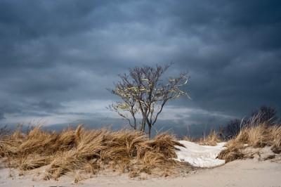 Plumb Beach