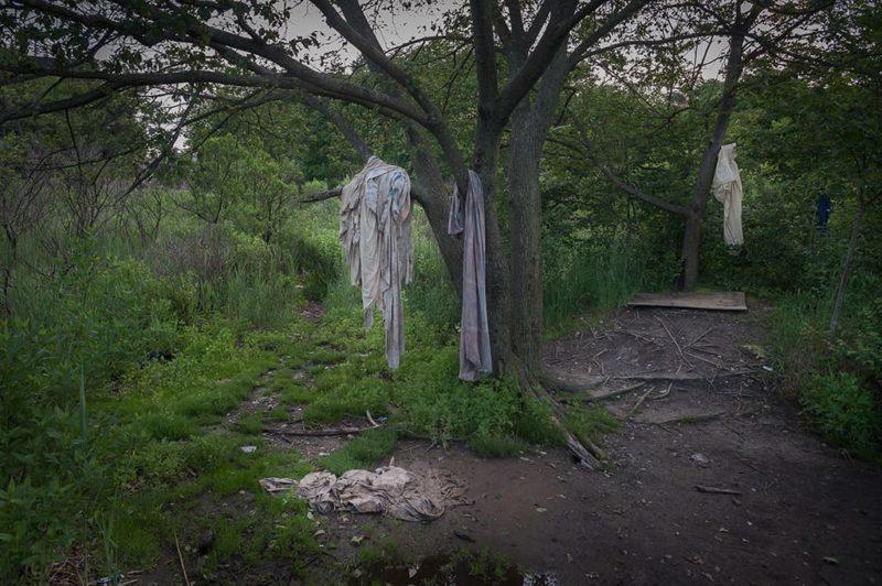 Torn Clothing in Trees, Marine Park, Brooklyn, by Adrian Kinloch