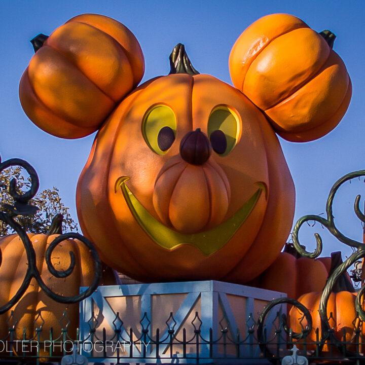 Disneyland #MNSSHP 2014