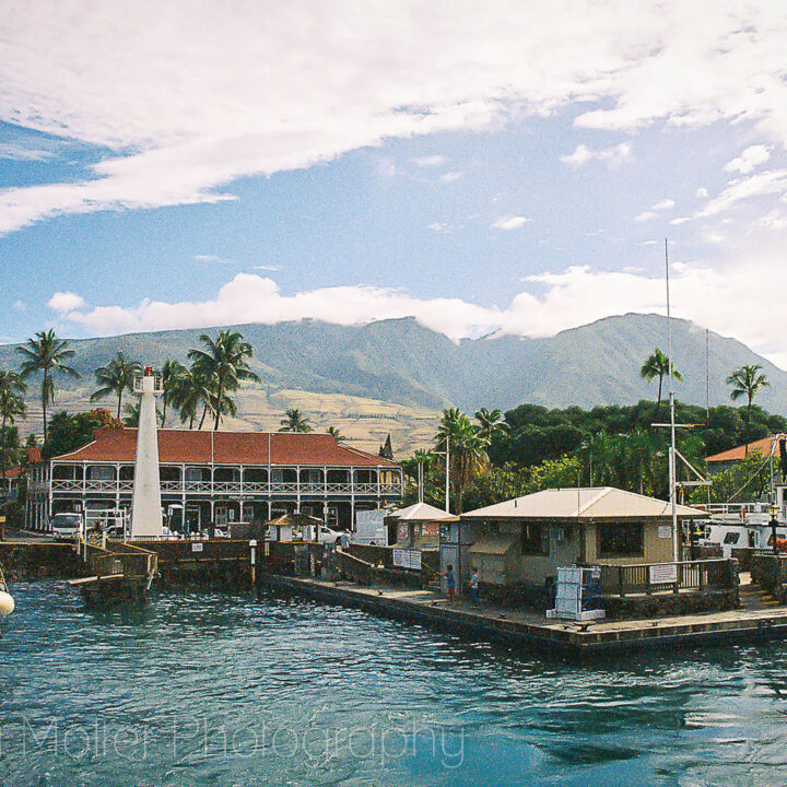 Lanai Day Trip