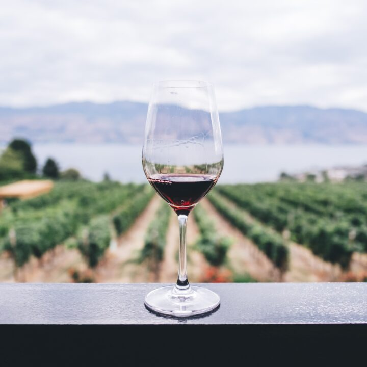 Camping in Wine Country - Here's What You Need to Know