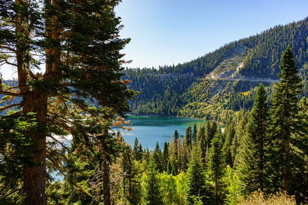 How to Travel to California on the Cheap