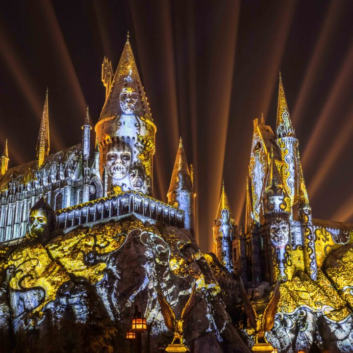 """A Powerful Dark Arts Spell Has Been Cast on """"The Wizarding World of Harry Potter"""""""