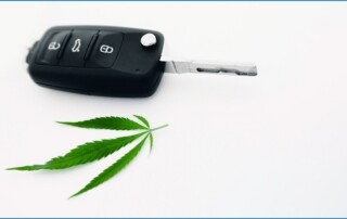 why-cannabis-and-cars-don't-mix