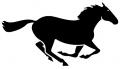 Horse-Running