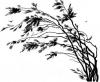 treeswind