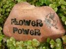 2-flowerpowersm