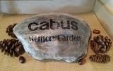 Catbus.1-17