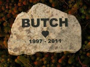 2 butch 1 12 sm 600