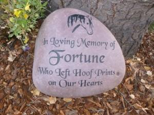 Fortune.9 14