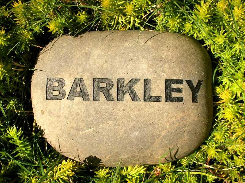 engraved signature rock pet marker 1399342984