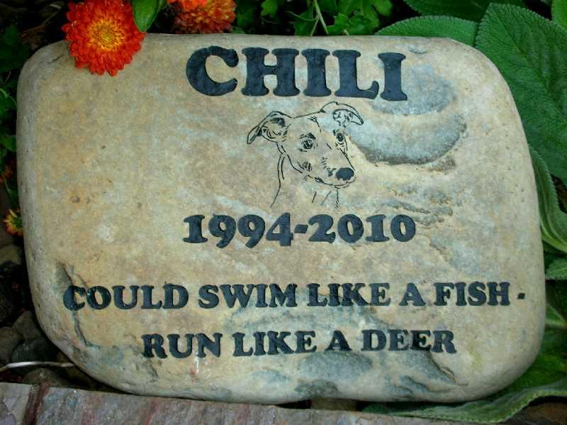 large engraved river rock pet marker 1399342586