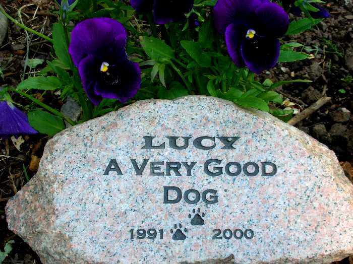 medium engraved granite stone pet marker 1399343123