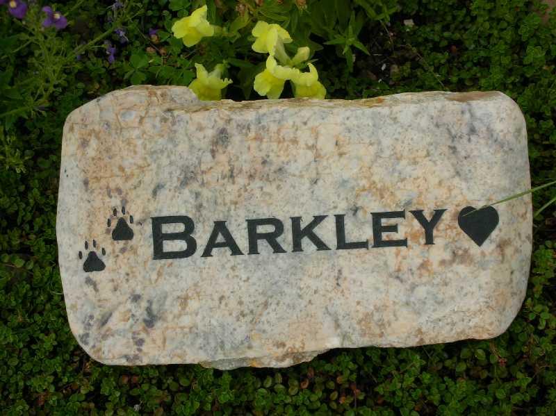 small engraved granite stone pet marker 1399343197
