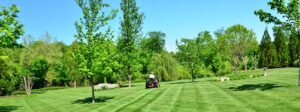Read more about the article Keeping Lawns Green