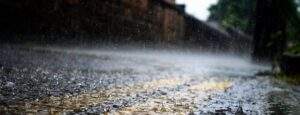 Read more about the article The Rainy Season