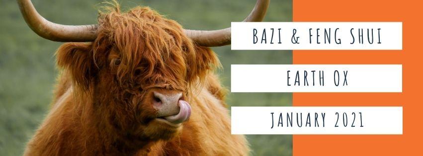 January 2021 Yin Earth Ox Feng Shui & BaZi Update