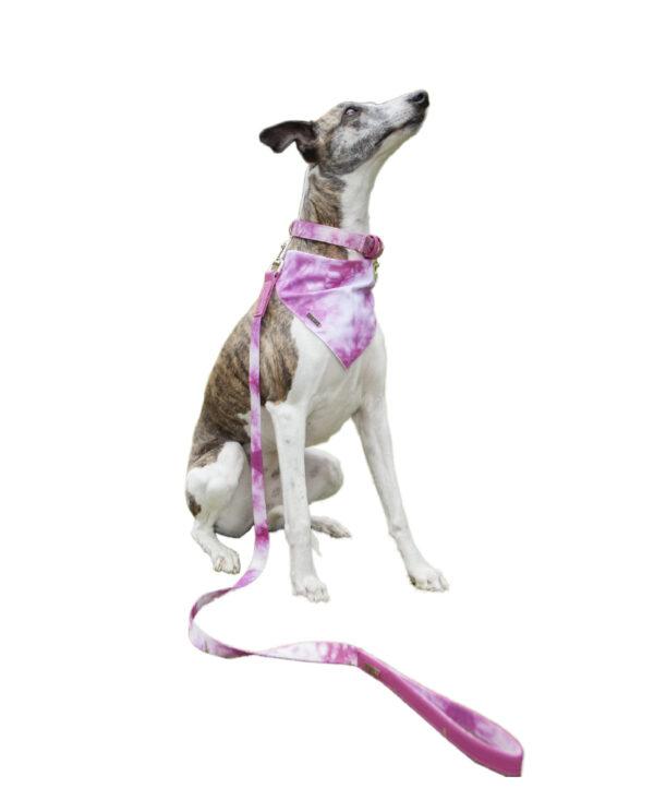 Correa Pink Tie Dye - Feroz