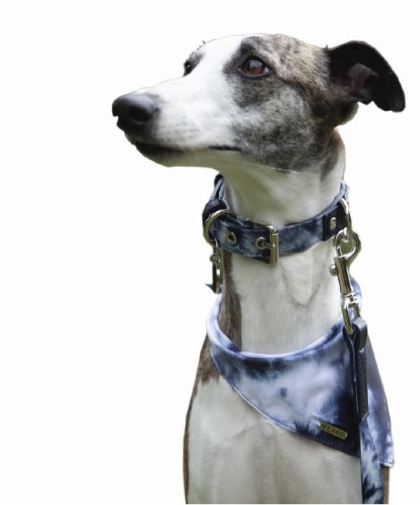 Pañoleta blue tie dye - Feroz