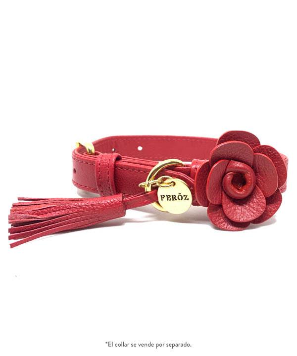 Rosas cuero rojo - Feroz