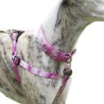 9-arnes-pink-tie-dye