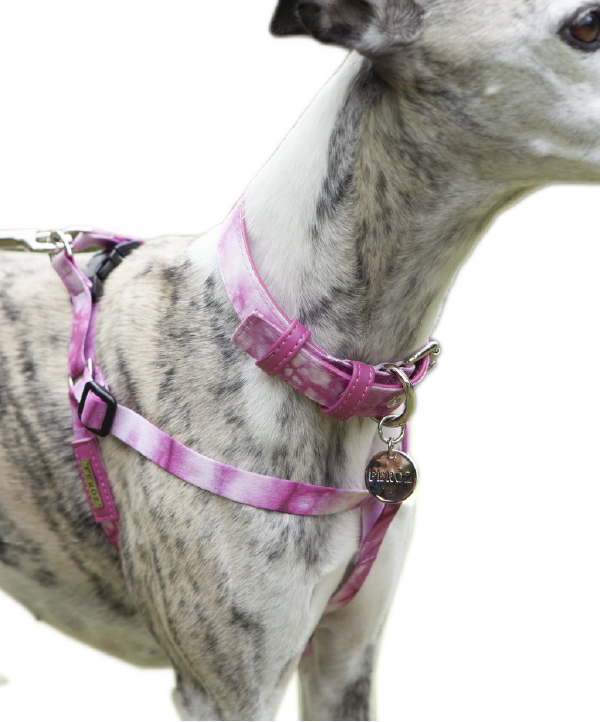 Arnés Pink Tie Dye - Feroz