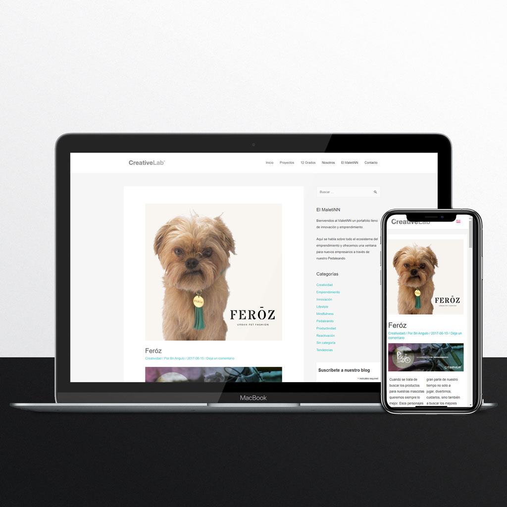 Creative Lab - Feroz Pet Fashion
