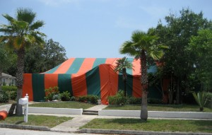 how to kill termites with tent fumigation
