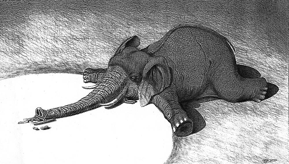 Elephnt