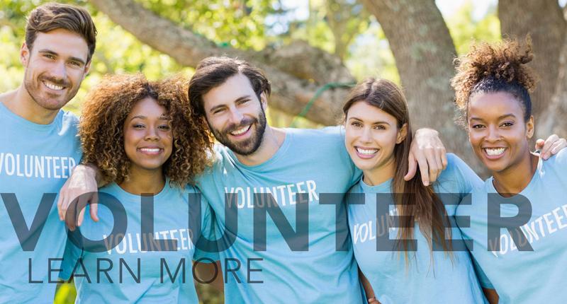 volunteer-link-v2