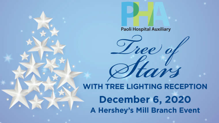 Tree of Stars with Tree Lighting Reception