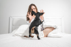 Dog Behaviorist ProTips To Stop Puppy Biting