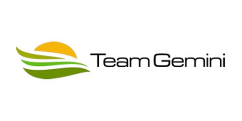 Team Gemini - Sustainable Development Consulting