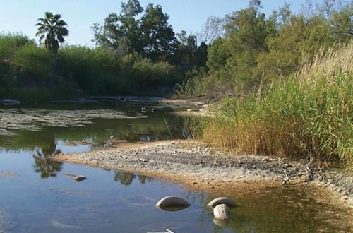Riverbend Aquatic Ecosystem – Laredo, TX
