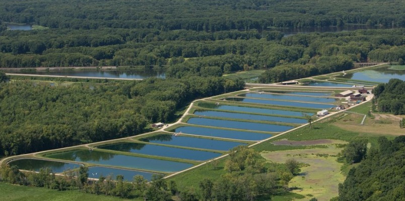 National Fish Hatchery – Rhinelander, WI