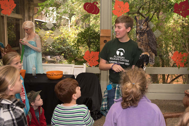 October Events Not to Miss in Shelby County