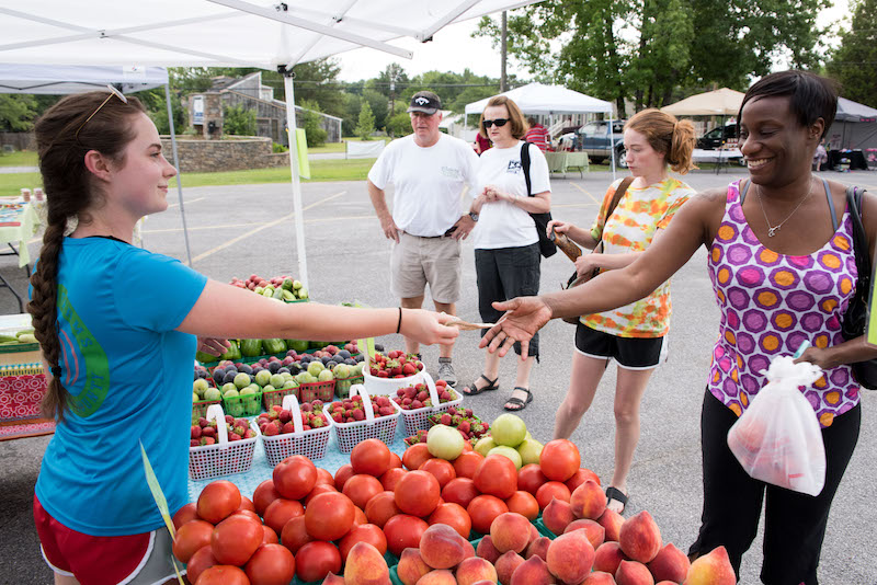 August Events Not to Miss in Shelby County
