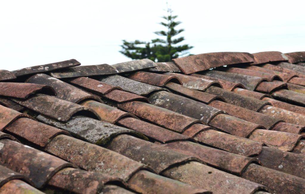 roof inspection before buying a house