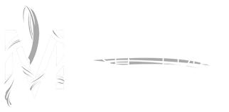 Meesh Aerial Logo